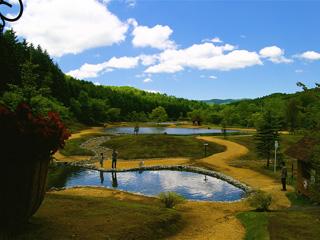 Shimamatsu River Territory 10pound画像