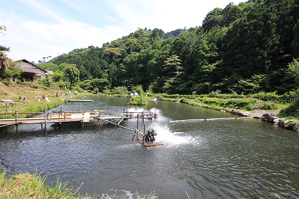 浅川国際鱒釣場管理棟より写真
