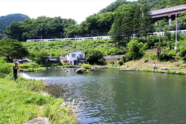 浅川国際鱒釣場中央線の往来を見ながら写真