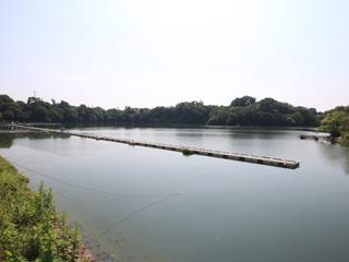 鮎川湖画像