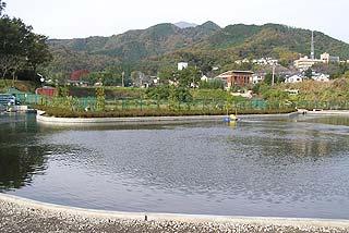 BREEZE釣り池写真