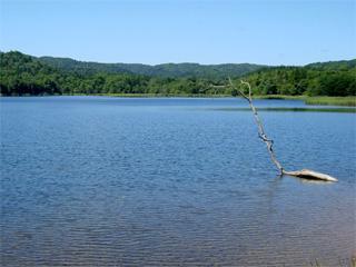 チミケップ湖・チミケップキャンプ場画像