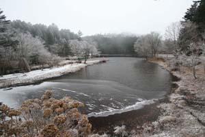 段戸湖写真