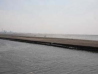 江川海岸画像
