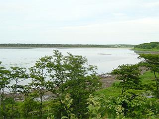 風蓮湖画像