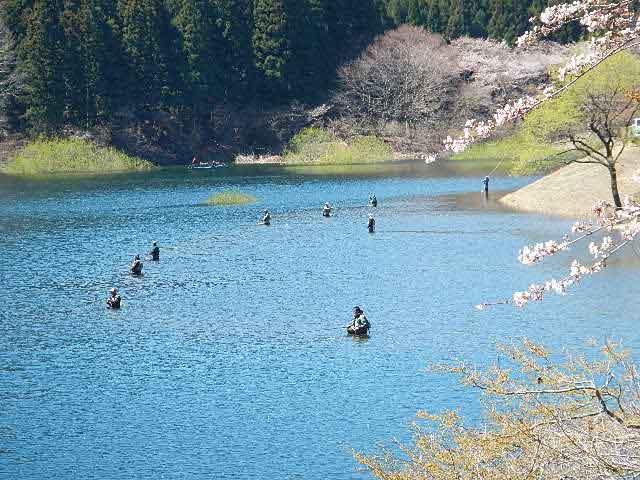 東古屋湖・わかさぎ釣場画像