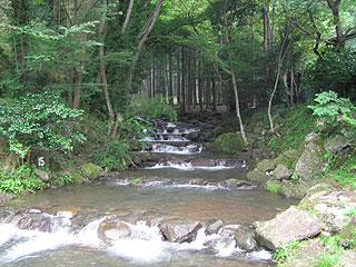日向山荘マス釣場画像