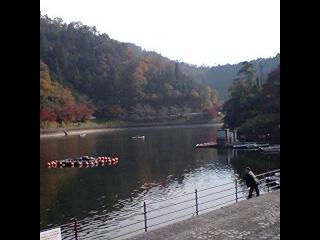 伊自良湖画像