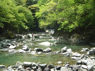神之川キャンプ・マス釣り場画像