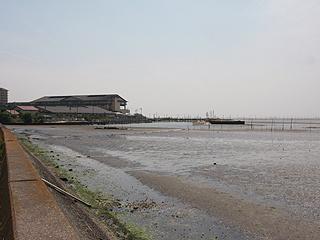 金田海岸画像