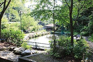 神川町矢納フィッシングパーク入口より池を望む写真