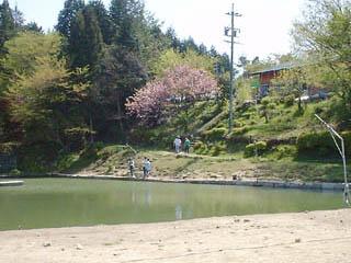中津川フィッシングエリア和紀の池画像