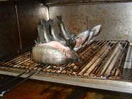 北沢にじますセンター焼き魚も可能写真