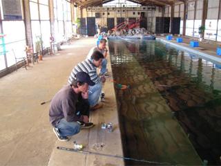 海釣りハウス コリュッシュ画像