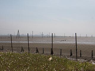 久津間海岸画像
