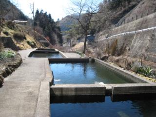 民宿鱒池冬の池写真