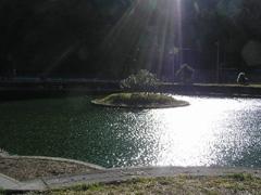 米沢池 画像