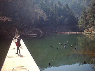なごみの湖 湯船森林公園フィッシングエリア画像