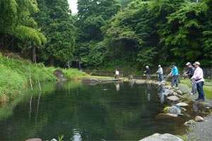 奈良子釣りセンターヤマメ池写真