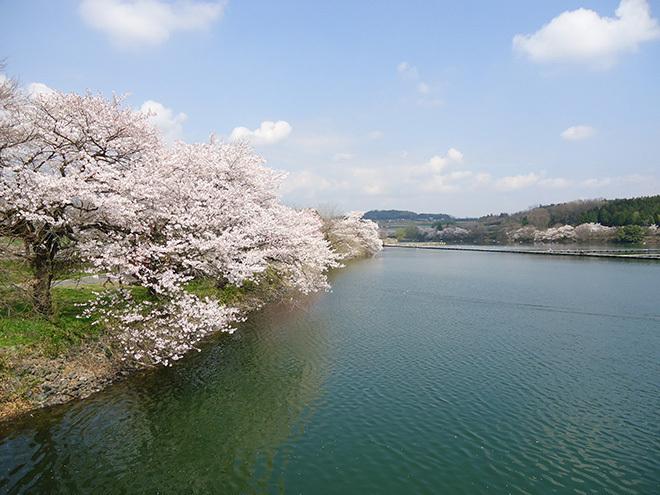 丹生湖写真