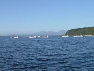 小川原湖 画像