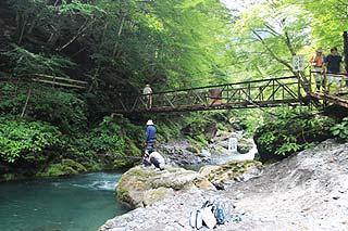 大血川渓流観光釣場移動は木道・吊り橋など写真