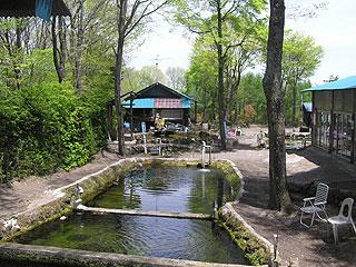 町田つりぼり園(押切場釣り堀)画像