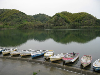 桜池管理釣場画像