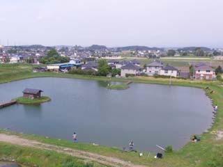 関根養魚場池写真