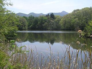 照月湖画像