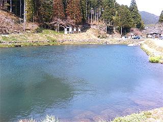 魚の里杉島画像