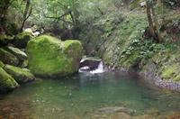 FF須谷川画像