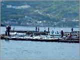 筏釣りの東海写真