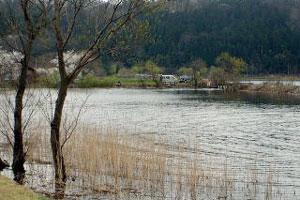 余呉湖へら陸つりわかさぎ写真