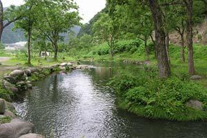 湯沢東山フィッシングパークえさ池写真