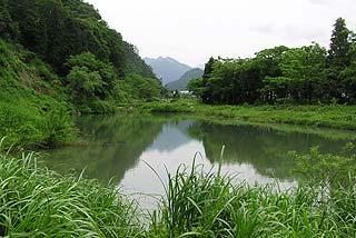 湯沢東山フィッシングパークルアーフライ池写真