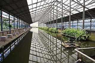 フィッシングエリア座間養魚場室内釣り堀写真