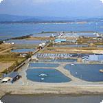 浜名湖フィッシングリゾート11月1日(土)よりトラウトシーズンはじまる。