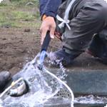 管理釣り場初心者が知っておきたい放流直後のカラーとは?