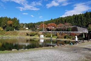 308Club秋の池写真