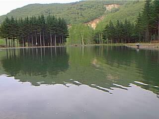 TOMO PLAYPARK FISHING AREA画像