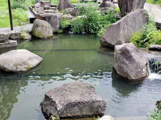 いわなの里太谷川画像
