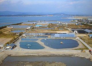 浜名湖フィッシングリゾート写真