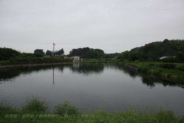 アングラーズパークキングフィッシャー5号池写真