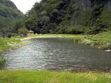 九重フィッシングリゾート3号池写真