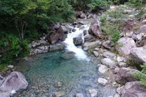 美濃フィッシングエリア渓流(2〜9月)写真