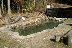 美濃フィッシングエリアアマゴ池写真