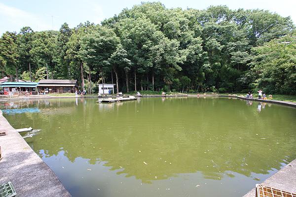 つり掘森屋荘広いコイ釣り池写真