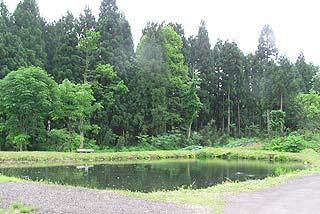 妙高水産イワナの里釣り池写真