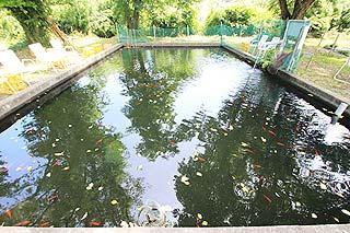 恩方国際釣堀場バラエティ池写真